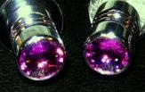 purple-valvestem-cap